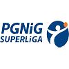 PGNiG Superliga Mężczyzn